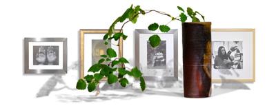 art link obtain Photos
